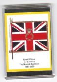 NORFOLK REGIMENT COLOURS 1887 LARGE FRIDGE MAGNET